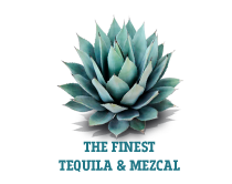 teqfest_london_button_tequila_mezcal